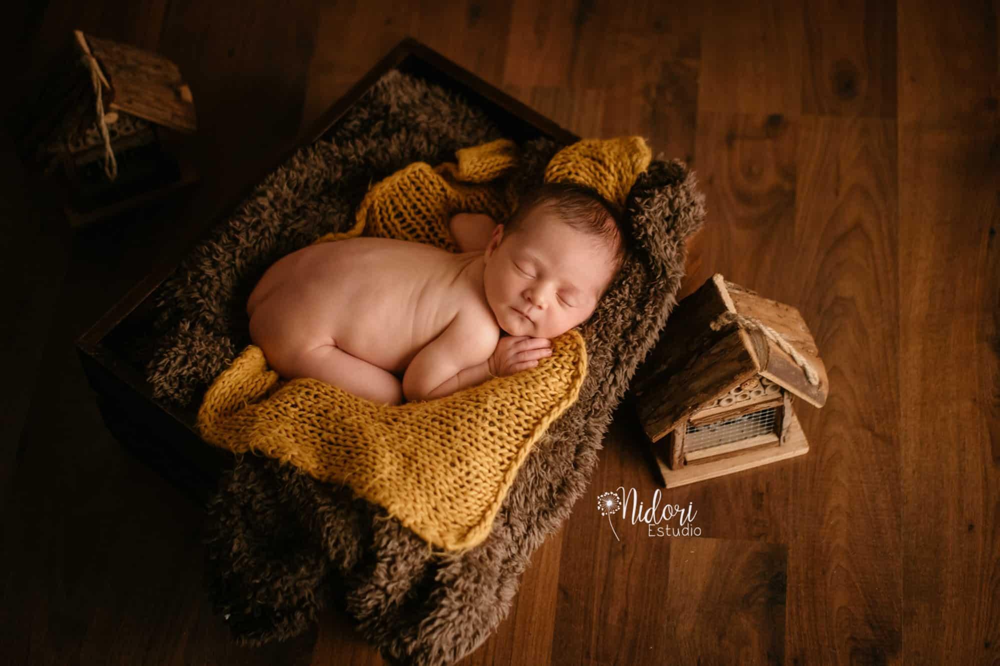 fotosbebe-fotografia-recien-nacido-newborn-bebes-nidoriestudio-fotos-valencia-almazora-castellon-españa-spain-12